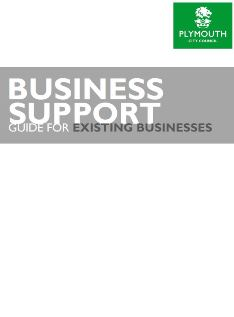 Business Guide Existing Businesses