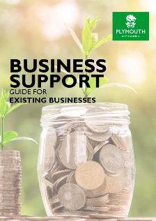 Business Support Guide for Existing Businesses