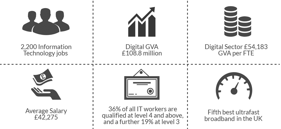 Digital Sector Infographic