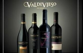 Wine Tasting With Valdivieso, Chile