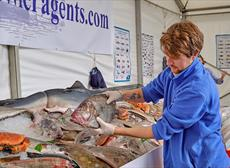 12 things you won't want to miss at Plymouth Seafood Festival