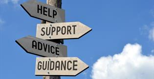 Business Support to help and advise your business to grow and export