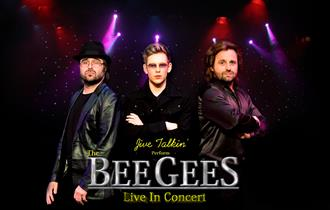 Jive Talkin' present The Bee Gees Live In Concert