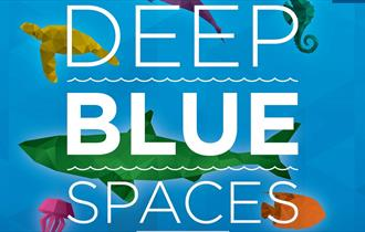 Deep Blue Spaces: October Half Term at the Aquarium