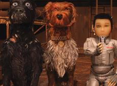 Open Air Cinema: Isle of Dogs (PG) at Royal William Yard