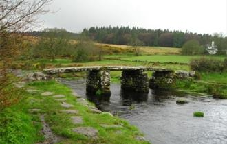 Dartmoor Safaris