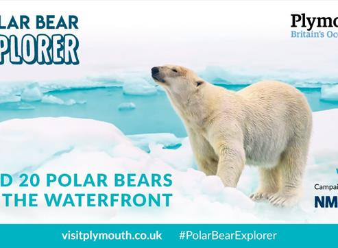Polar Bear Explorer