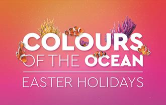 Colours of the Ocean | Easter Holidays
